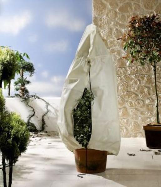 k belpflanzensack winterschutz garten zubeh r bambuswald bambus und pflanzen f r haus. Black Bedroom Furniture Sets. Home Design Ideas