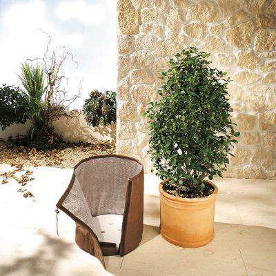 Topf-Schutz für Kübelpflanzen