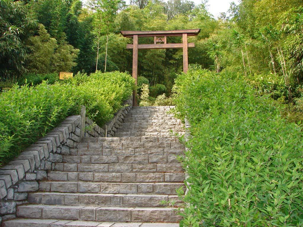 shiabatea-kumasaca-treppenaufgang50e6ac5a99cf1