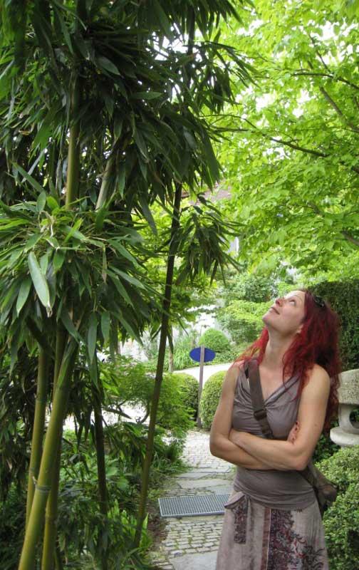 Team Der Gärtnerei Hofstetter Mühle Bambus Und Pflanzenshop