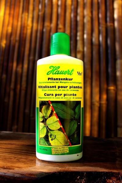 Pflanzenkur von Hauert