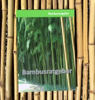 Bambusratgeber - alles über Bambuspflanzen