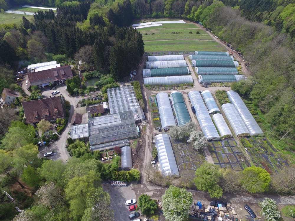 2016-06-Gartenbau-Hofstetter-Mu-hle-oben-3