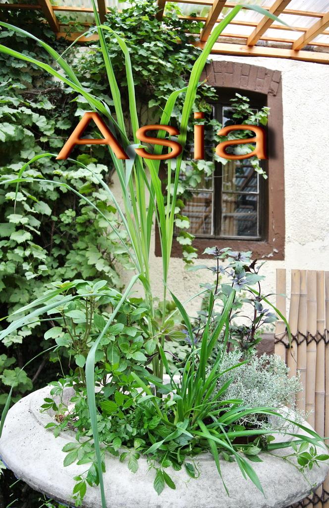 asiatische kr uterk che bambus und pflanzenshop. Black Bedroom Furniture Sets. Home Design Ideas