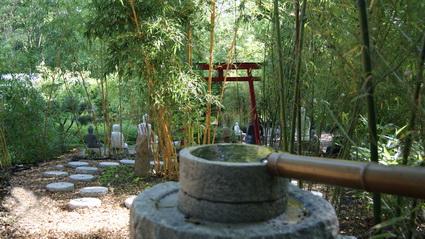 startseite-bambuswald2011