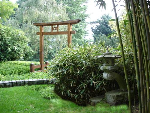 bambuswald_eingang