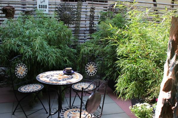 bambus hecke im kasten mobile hecke bambus und pflanzenshop. Black Bedroom Furniture Sets. Home Design Ideas